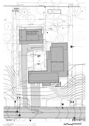 SHAW - site plan